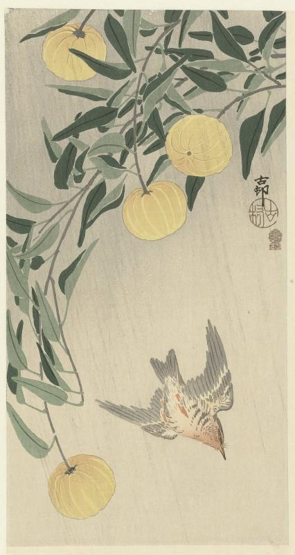 Ohara Koson - Cuckoo in the rain