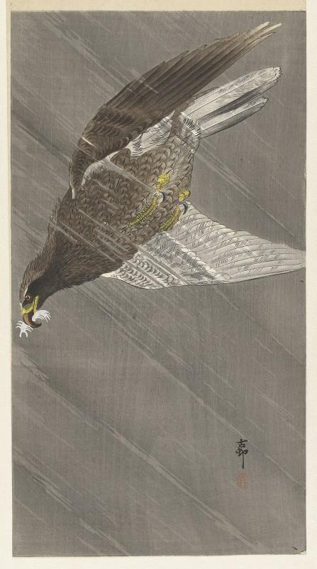 Ohara Koson - Eagle Flying Down